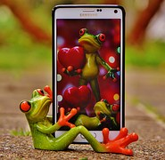 frog-1339891__180 TELEFORMATION GRENOUILLE